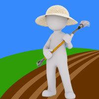 Conseils de jardinage graines elem for Conseil de jardinage