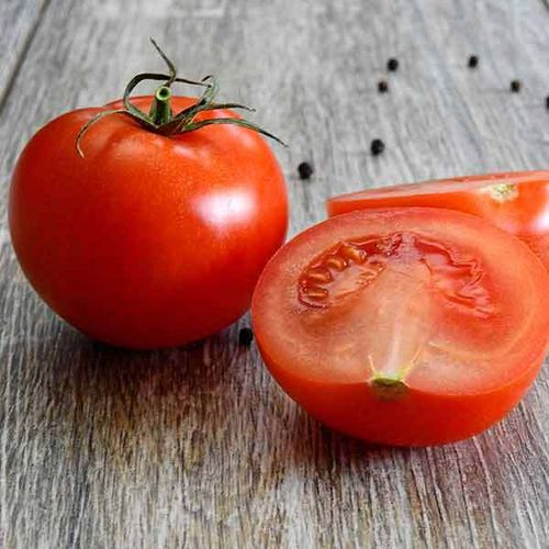 TOMATE CASAQUE ROUGE 2g