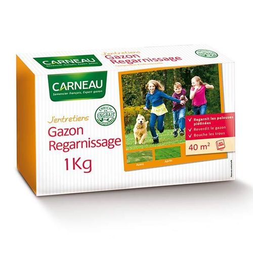 GAZON DE REGARNISSAGE le sachet de 1Kg pour 40m²