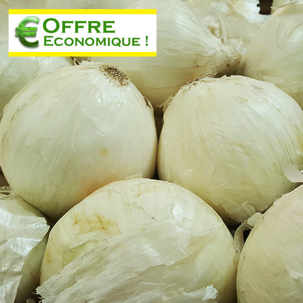OIGNON SNOWBALL Le filet de 500g - Graines Elem