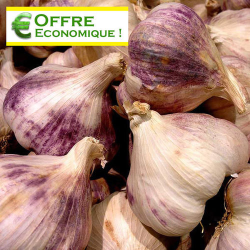 AIL GERMIDOUR Le filet de 500 g