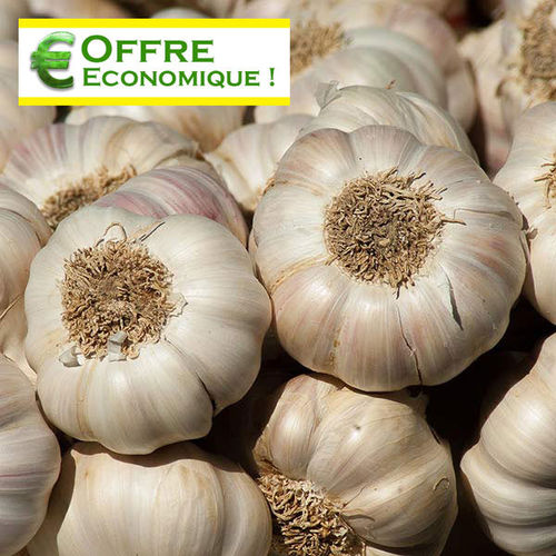 AIL MESSIDROME Le filet de 500 g
