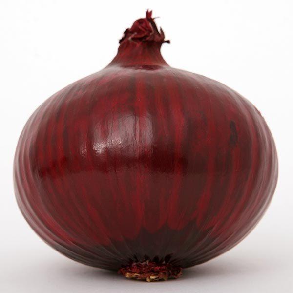 oignon rouge karmen le filet de 250g graines elem. Black Bedroom Furniture Sets. Home Design Ideas