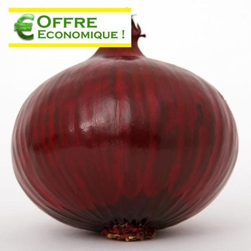 OIGNON ROUGE KARMEN Le filet de 500g