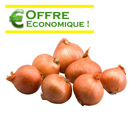 ECHALOTE RED SUN Le filet de 1kg