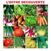 Collection des 16 indispensables du potager